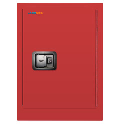 Combustible industrial safety cabinet Labo102CISC